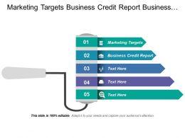 Marketing Targets Business Credit Report Business Communication Process