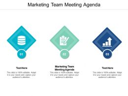 Marketing Team Meeting Agenda Ppt Powerpoint Presentation Pictures Themes Cpb