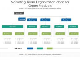 Marketing Team Organization Chart For Green Products Infographic Template