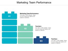 Marketing Team Performance Ppt Powerpoint Presentation Summary Good Cpb