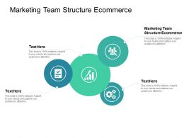 Marketing Team Structure Ecommerce Ppt Powerpoint Presentation Gallery Topics Cpb