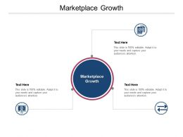 Marketplace Growth Ppt Powerpoint Presentation Gallery Clipart Images Cpb