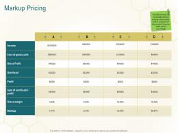 Markup Pricing Business Planning Actionable Steps Ppt Summary Layout Ideas
