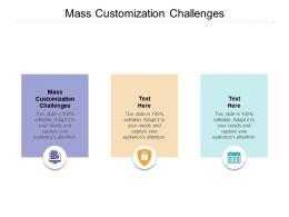 Mass Customization Challenges Ppt Powerpoint Presentation Gallery Designs Cpb
