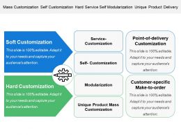 Mass Customization Self Customization Hard Service Self Modularization Unique Product Delivery