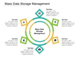 Mass Data Storage Management Ppt Powerpoint Presentation Layouts Clipart Cpb