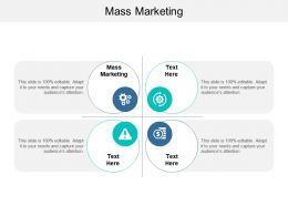 Mass Marketing Ppt Powerpoint Presentation Slides Infographic Template Cpb