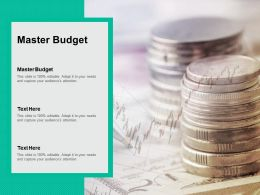Master Budget Ppt Powerpoint Presentation Layouts Guidelines Cpb