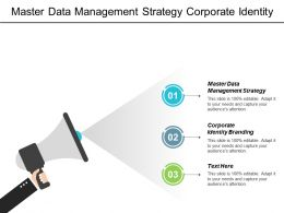Master Data Management Strategy Corporate Identity Branding Performance Benchmarks Cpb