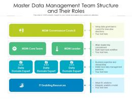 Master Data Management Team Structure And Their Roles