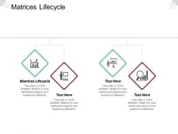 Matrices Lifecycle Ppt Powerpoint Presentation Inspiration Graphic Images Cpb