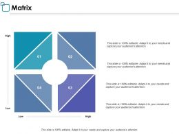 Matrix Business Management Ppt Powerpoint Presentation Layouts Graphics