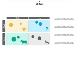 Matrix Business Ppt Infographics Example Introduction