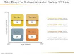 Matrix Design For Customer Acquisition Strategy Ppt Ideas