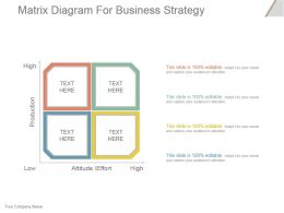 Matrix Diagram For Business Strategy Powerpoint Slide Presentation Guidelines