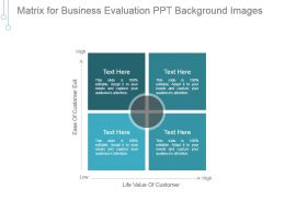Matrix For Business Evaluation Ppt Background Images
