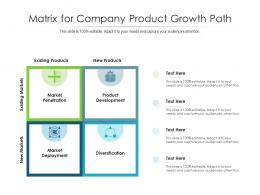 Matrix For Company Product Growth Path