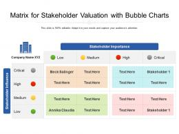 Matrix For Stakeholder Valuation With Bubble Charts