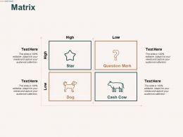 Matrix Management Marketing C485 Ppt Powerpoint Presentation Show Inspiration