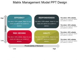 Matrix Management Model Ppt Design