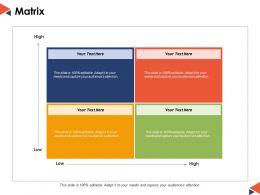 Matrix Management Ppt Powerpoint Presentation File Infographic Template