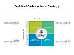 Matrix Of Business Level Strategy