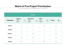 Matrix Of Five Project Prioritization