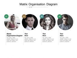Matrix Organisation Diagram Ppt Powerpoint Presentation File Example Topics Cpb