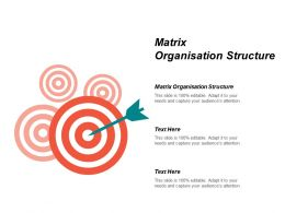 Matrix Organisation Structure Ppt Powerpoint Presentation Infographics Show Cpb