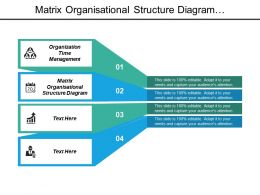 Matrix Organisational Structure Diagram Organization Time Management Organizational Performance Cpb