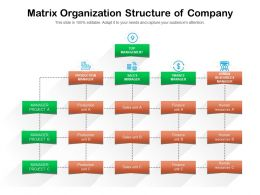 Matrix Organization Structure Of Company