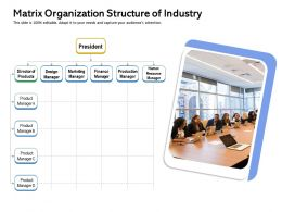 Matrix Organization Structure Of Industry