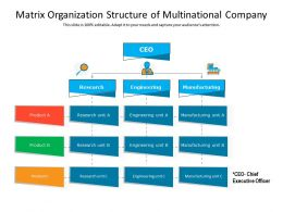 Matrix Organization Structure Of Multinational Company