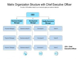 Matrix Organization Structure With Chief Executive Officer