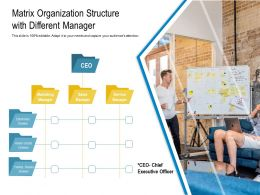 Matrix Organization Structure With Different Manager