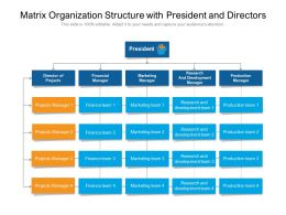 Matrix Organization Structure With President And Directors