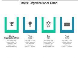 Matrix Organizational Chart Ppt Powerpoint Presentation Infographics Maker Cpb