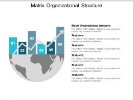 Matrix Organizational Structure Ppt Powerpoint Presentation Layouts Show Cpb