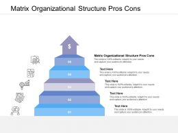 Matrix Organizational Structure Pros Cons Ppt Powerpoint Presentation Visual Aids Diagrams Cpb