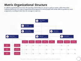 Matrix Organizational Structure System Ppt Powerpoint Presentation Gallery