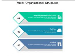 Matrix Organizational Structures Ppt Powerpoint Presentation Styles Themes Cpb