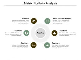 Matrix Portfolio Analysis Ppt Powerpoint Presentation Inspiration Slide Download Cpb
