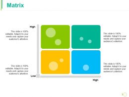 Matrix Ppt Gallery Professional
