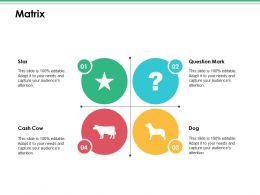 Matrix Ppt Infographics Images