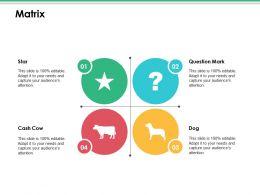 Matrix Ppt Infographics Images