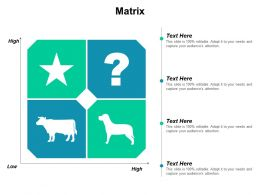 Matrix Ppt Powerpoint Presentation Gallery Summary