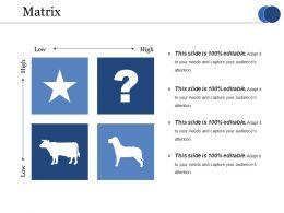 Matrix Ppt Summary Graphic Images
