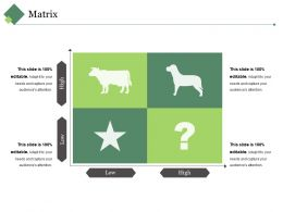 Matrix Ppt Summary Smartart