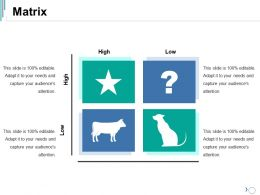 Matrix Ppt Visual Aids Infographics