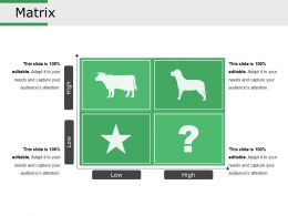 Matrix Presentation Visual Aids